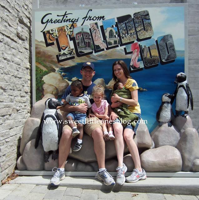 Toledo Zoo Family copy