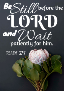Psalm 37_7 - Be Still and Wait
