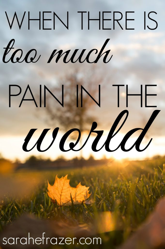 where-there-is-too-much-pain-in-the-world-devotional-for-women