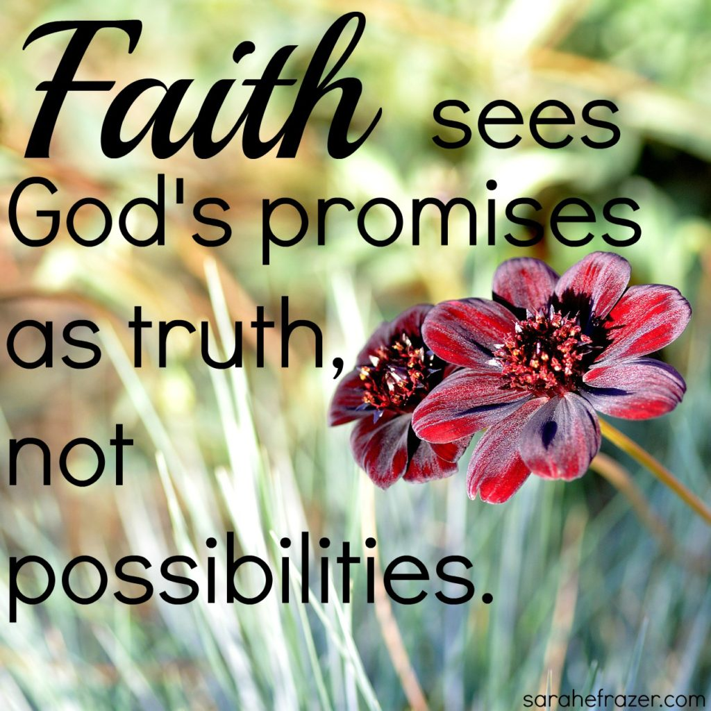 Faith sees God's promises