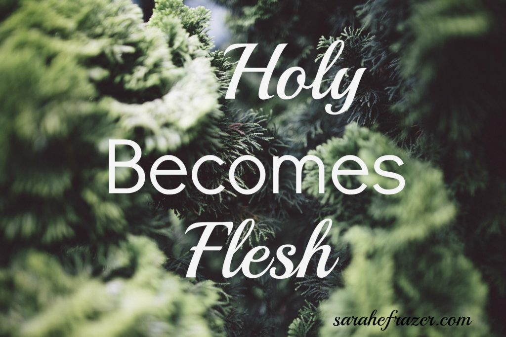 holy becomes flesh