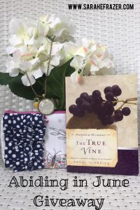 Abiding in June {Giveaway}