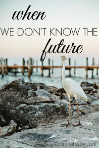 {Part 2} When We Don't Know the Future