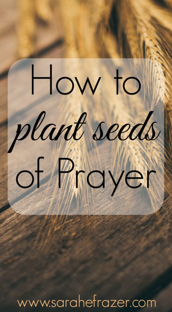 How to Plant Seeds of Prayer