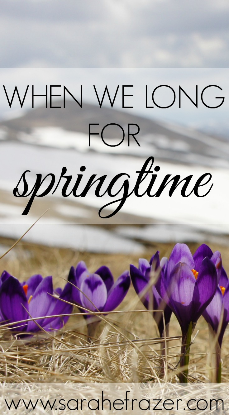 When We Long for Springtime